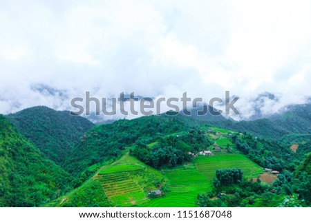 Beautiful scenery of the rice fields of Cat cat Village. #1151687048