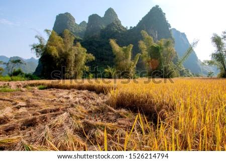 Beautiful scenery of Vietnam. Beautiful scenery of Vietnam #1526214794