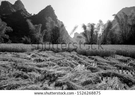Beautiful scenery of Vietnam. Beautiful scenery of Vietnam #1526268875