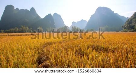 Beautiful scenery of Vietnam. Beautiful scenery of Vietnam #1526860604