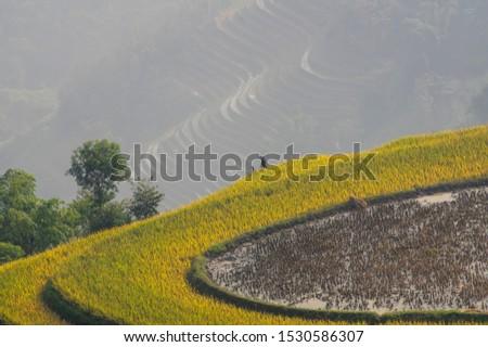 Beautiful scenery of Vietnam. Beautiful scenery of Vietnam #1530586307