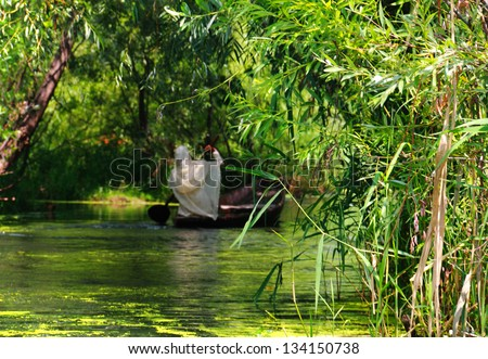 Beautiful scenic view in green tones - Indian woman in white shawl sitting in the boat on the Dal Lake full of foliage in Srinagar, Jammu & Kashmir, Northern India - picture with tilt shift effect