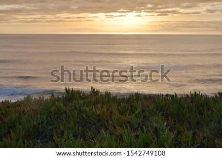 Beautiful scenic view of Half Moon Bay, California, America #1542749108
