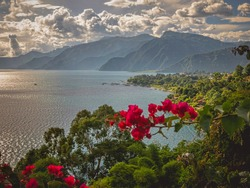 Beautiful Scenic View of Lake Atitlan, Guatemala in Central Latin America. Red Flowers in Foreground with Sierra Madre Mountain Range in Background. Summer Day with Dramatic White Clouds.