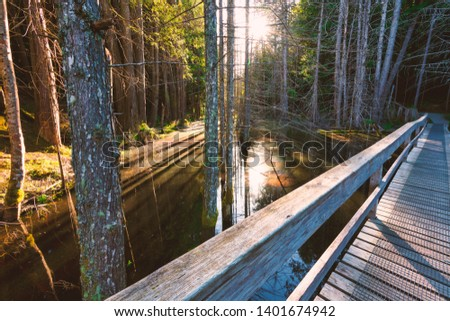 Beautiful scenics of landscapes waterscapes sunsets and lake reflections in Canada's pacific north west around Vancouver British Columbia Canada.  Fine art photography for home and office decor. #1401674942