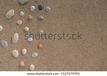 Beautiful sea background.  sea ​​sand beach with water waves and shells #1127679995