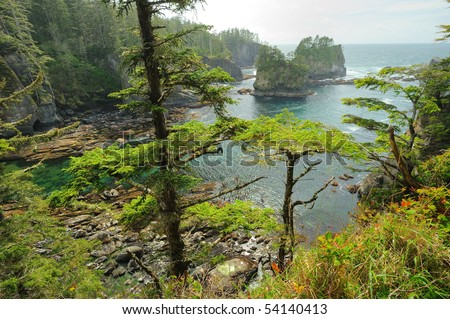 beautiful seascape in cape flattery of olympic national park, washington, usa