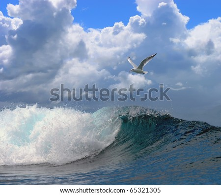 beautiful seascape with a noisy foaming waves and seagull on a blue sky with clouds - stock photo