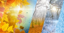 Beautiful seasonal background - two seasons of year collage. Vibrant colorful images of different time of year - fall and winter. Weather forecast concept.