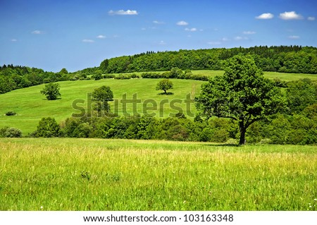 Beautiful secluded countryside in a clear-sky day in Czech republic. The Carpathian Mountains,