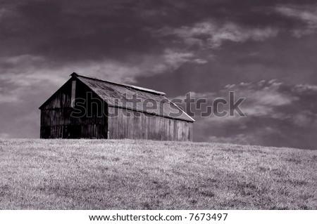 Beautiful sepia image of vintage kentucky Horse barn