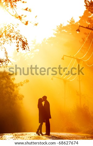 beautiful shot of kissing couple in the sunlight