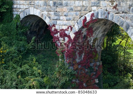 Beautiful shot of red vine on old stone bridge built in 1874