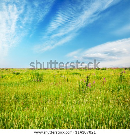 beautiful sky and summer fields, fantasy background