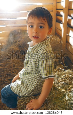 beautiful small boy on hayloft at sunny day