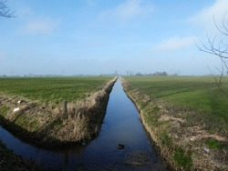 beautiful small brook lined with green grass and waterreflection. Blue sky in dutch landscape near Groningen