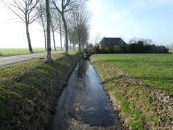 beautiful small brook lined with poplars and waterreflection. In the background beautiful dutch farm.