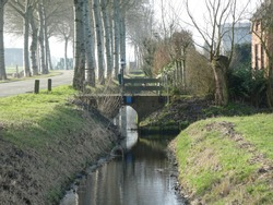 beautiful small brook lined with poplars. Waterreflection and little scenic  Bridge and little dutch house