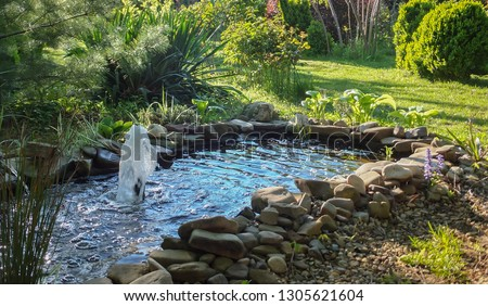 Beautiful small garden pond with a stone beach and a fountain against the background of an evergreen garden. In the pond with a stone coast is reflected blue sky. Summer joyful landscape.