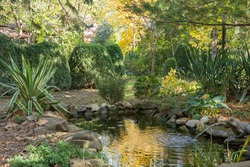 Beautiful small Garden Pond with frog-shaped Fountain and Stone banks. Golden Autumn in Landscaped Garden. Reflection of yellow leaves of deciduous plants on water surface of Pond. Selective focus.