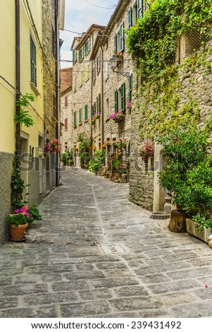 Beautiful small street provincial Italy  #239431492
