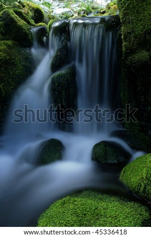 Beautiful small waterfall in forest