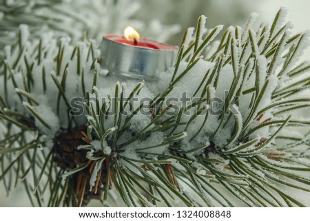 Beautiful snow-covered branch of the fir. Candle on a fir tree #1324008848