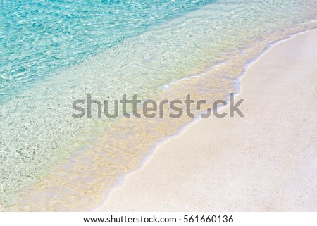 Beautiful soft waves, beach sea background  #561660136