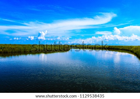 Beautiful Southern Louisiana Bayou surrounded by marsh