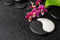Beautiful spa concept of zen and sign Yin-Yang stones with drops, red orchid (phalaenopsis) and green leaf. Copy space