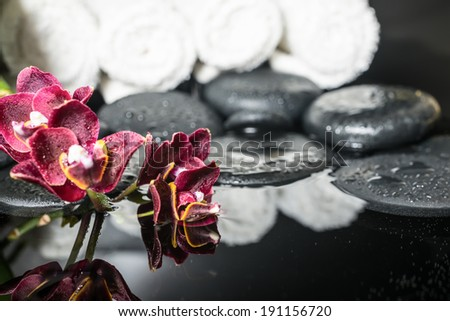 Beautiful spa setting of zen stones with drops and blooming twig of dark sherry orchid (phalaenopsis ), reflection on water