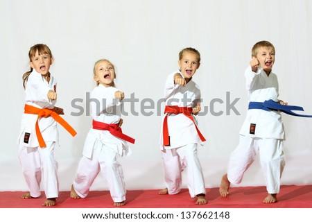 Beautiful sport karate kids