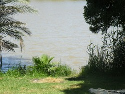 Beautiful spot on the river bank in the park. Green grass, trees, yellow picnic blanket and the lake water. Perfect location for picnic.