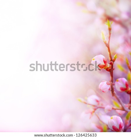 Beautiful spring blossoming tree on sky background - stock photo