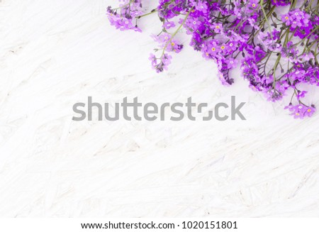 Beautiful Spring Floral background with copy space. Arrangement of lilac flowers on white grunge wood background. Top view. Web banner or greeting card for celebration mothers day, birthday, Easter