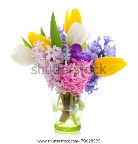 Beautiful spring flowers  isolated on white background(crocus, hyacinth, tulip)