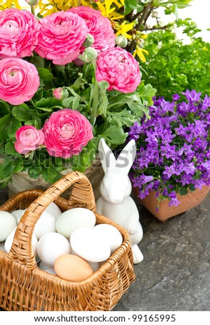 beautiful spring flowers with easter decoration. ranunculus, campanula, forsythia