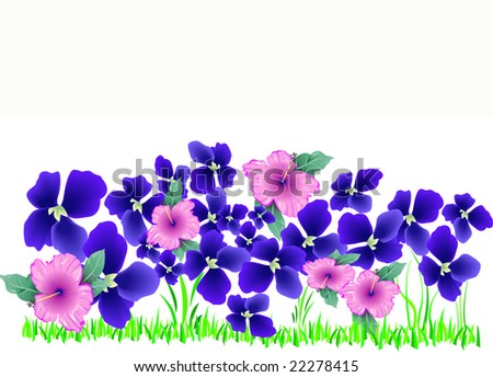 beautiful spring garden with violets and hibiscus, illustration, copy space
