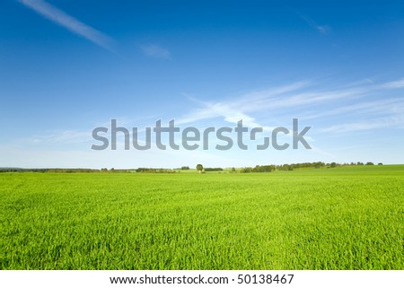 beautiful spring landscape and cloudy sky - stock photo