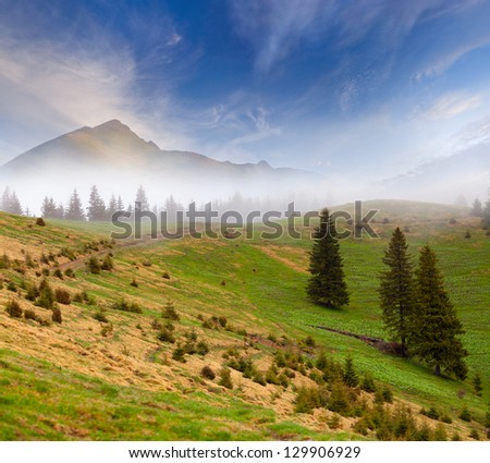 Beautiful spring landscape in the foggy mountains.