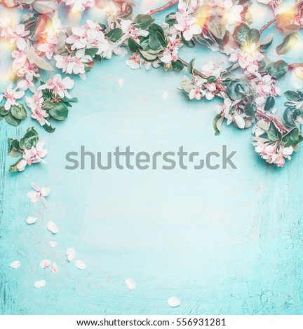 Beautiful spring nature background with lovely blossom, petal and bokeh on turquoise blue background , top view, frame. Springtime concept