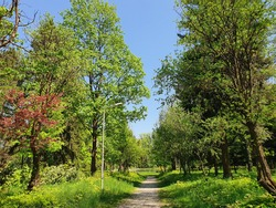 Beautiful spring scene of Peja's Park, and a colorful noon view.