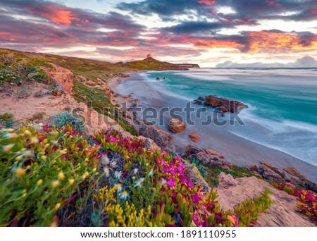 Beautiful spring scenery. Colorful morning scene of Sardinia, Italy, Europe. Fantastic sunrise on Capo San Marco Lighthouse on Del Sinis peninsula. Picturesque seascape of Mediterranean sea.
