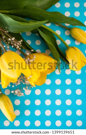 beautiful spring yellow tulip flowers on blue polka dot background #1399139651