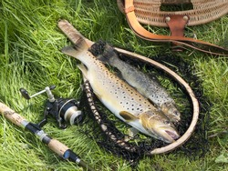 beautiful still life with trout and fishing tools