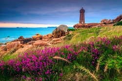 Beautiful stone lighthouse and colorful pink flowers at sunset, Perros Guirec, Bretagne (Brittany region), France, Europe