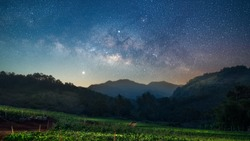 Beautiful strawberry green field with milkyway in night sky landscape at Chiangmai, Thailand