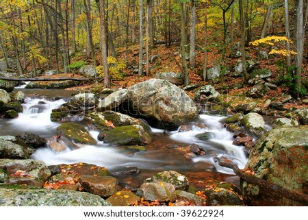 Beautiful stream during fall of the year with blurred water to have the cotton candy effect.