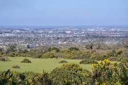 Beautiful suburban aerial-like view of Irish countryside with horse farm and yellow gorse (Ulex) on a sunny spring day, Co.Dublin, Ireland. Southwestern Dublin