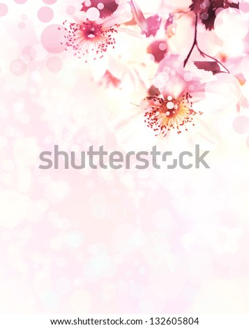 Beautiful summer background background with pink flowers and purple blurs/Spring border background with pink blossom